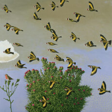 David Inshaw 'Goldfinches', oil on canvas, 2003/4